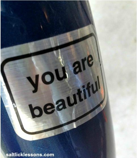 You-Are-Beautiful-bumper