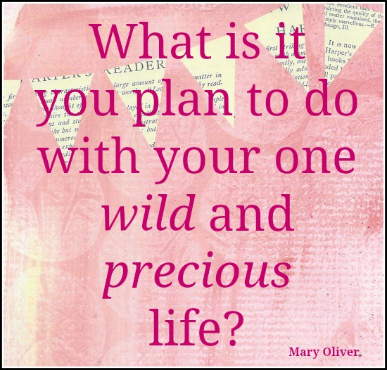 Wild and Precious Life, Mary Oliver, inspirational quote, enjoy the journey