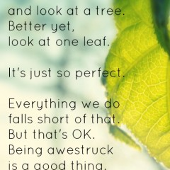 Sunday Sentiment {six–the one about being awestruck}