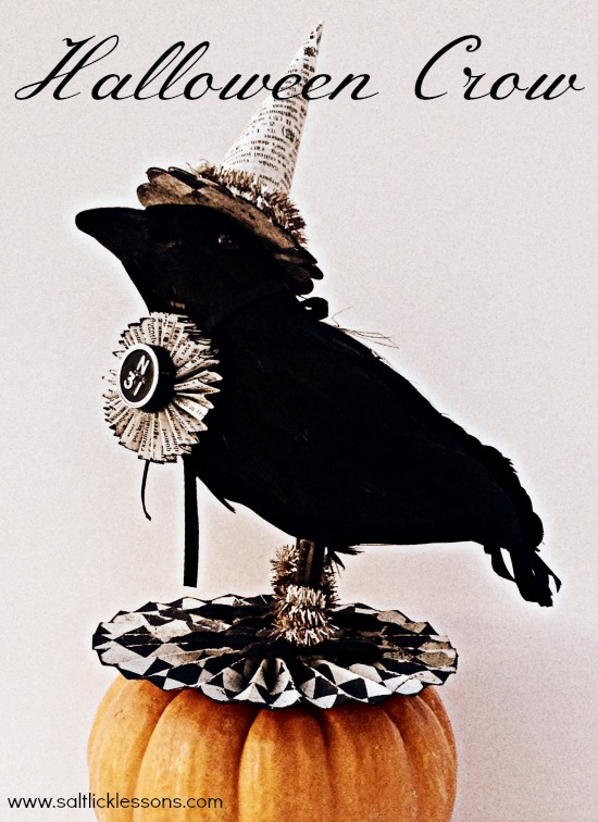 Decorated Halloween Crow craft project