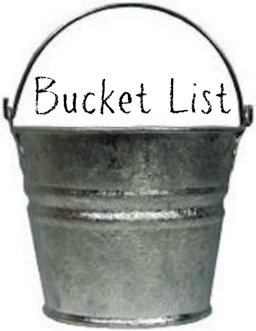 B's Bucket List